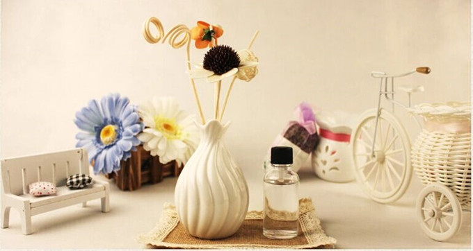 Reed Diffuser Set with Nature Ratten Stick/Sola flowers and Nice Packaging